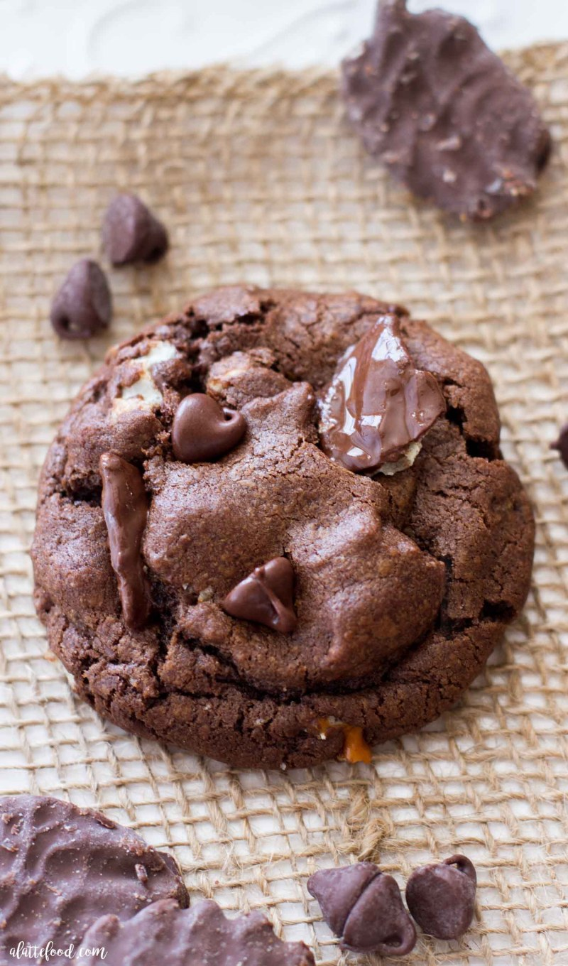 This easy sweet and salty double chocolate chip cookie recipe is THE cookie for any chocolate dessert lovers! These rich (double) chocolate chip cookies are full of chocolate chips,chocolate covered potato chips, and salty pretzels! Salty and sweet at its finest.