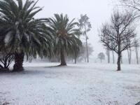 Güney Afrika'da başkente 52 yıl sonra kar yağdı