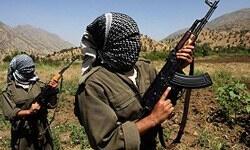 'Kürtler Arap Baharı'yla umutlandı'