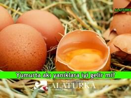 Yumurta Aki Yaniklara Iyi Gelir mi