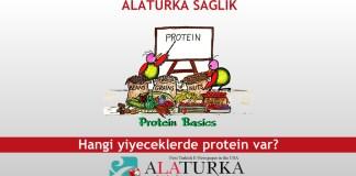 Hangi yiyeceklerde protein var