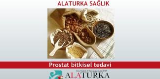 Prostat bitkisel tedavi