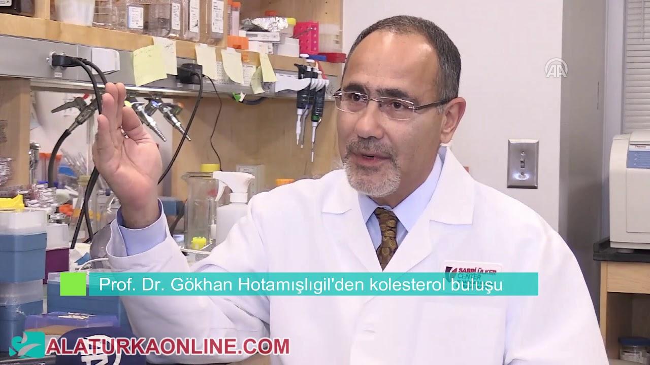 Prof. Dr. Gökhan Hotamışlıgil'den kolesterol buluşu