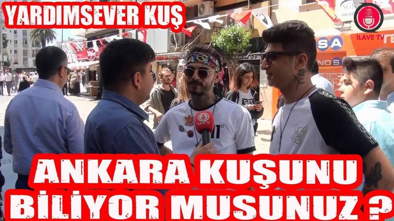 Ankara Kuşunu Biliyor Musunuz ?