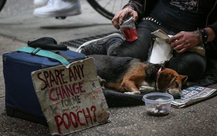 Los Angeles'ta evsizlerin sayısında keskin yükseliş