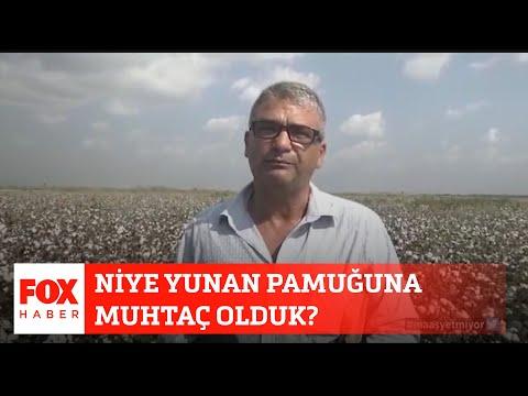 Niye Yunan pamuğuna muhtaç olduk? 24 Eylül 2020 Selçuk Tepeli ile FOX Ana Haber