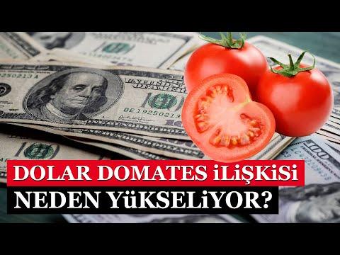 Domates dolar ilişkisi… Dolar neden yükseldi?