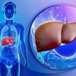 أنواع فيروسات الكبد وكيفية الوقاية منها