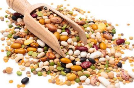 مصادر البروتين النباتي و الحيواني ودور كلا منهما في تغذية الانسان