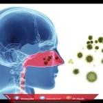 اعراض الدوسنتاريا وكيفية علاجها بالثوم