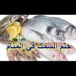 السمك في المنام للعزباء والمتزوجة لابن سيرين