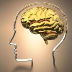هل ضمور المخ يسبب الوفاه وما الاسباب والاعراض والعلاج