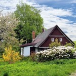 تفسير حلم الزرع الأخضر في البيت بالمنام لابن سيرين