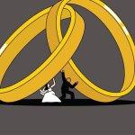 علامات الطلاق الصامت