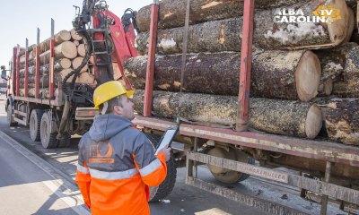 Timflow-Holzindustrie Schweighofer