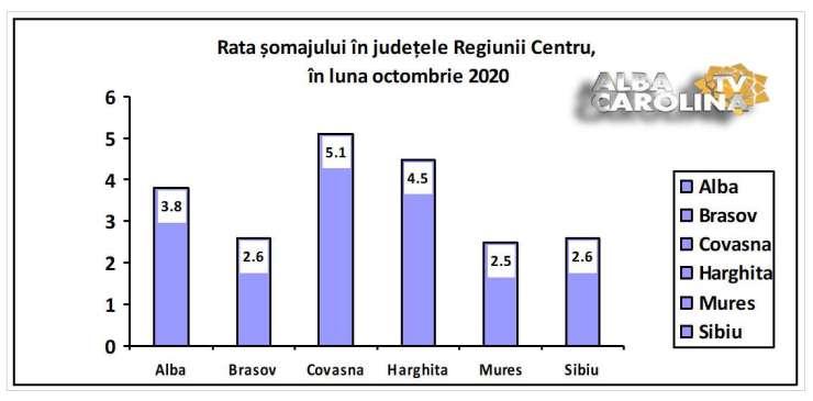 rata somaj regiunea centru judet alba
