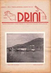 drini1