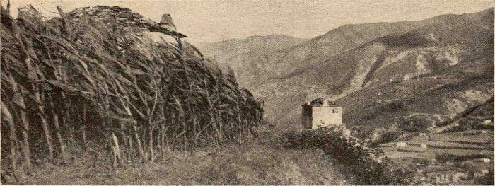 Albania - Photo, Dorien Leigh