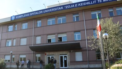 Zoja E Keshillit Te Mire Studenti Italiani Albania