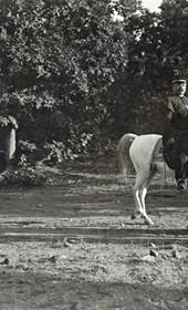 "Jäckh131: ""General Shefket Torgut Pasha, led by Bishop Docci [Doçi], on his way to Mirdita"" (Photo: Ernst Jäckh, ca. 1910. Courtesy of Rare Books and Manuscript Library, Columbia University, New York, 130114-0033)."