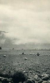 GM030: Rocky landscape in Dukagjin (Photo: Giuseppe Massani, 1940).