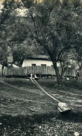 GM057: Women in Kruja, weaving under the olive trees (Photo: Giuseppe Massani, 1940).