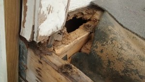 How to Know If Your Deck is Unsafe