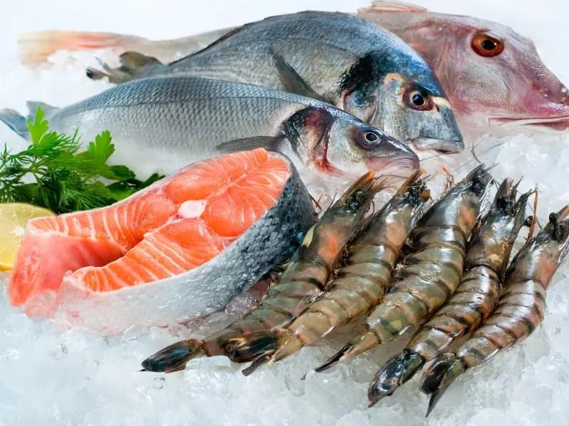 فوائد وأضرار المأكولات البحرية