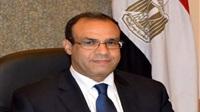 السفير بدر عبد العاطي،