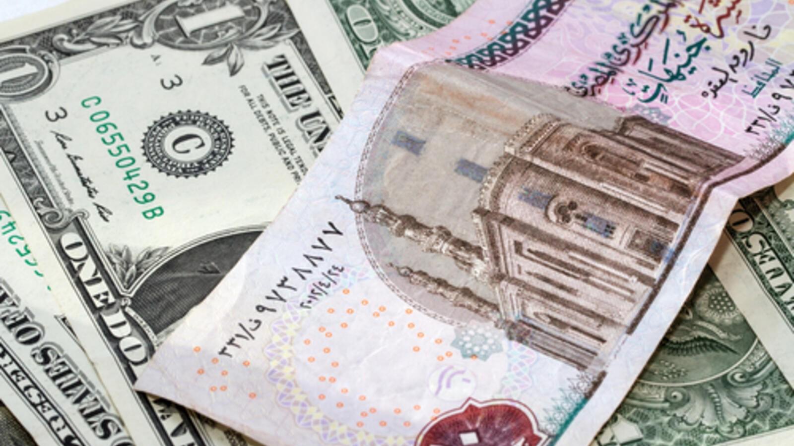 سعر الدولار مقابل الجنيه المصري اليوم البيان