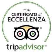 certificato di eccellenza tripadvaissor 2016 berlinghetto