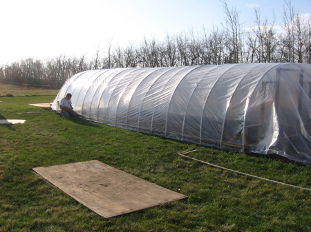 Covering the greenhouse