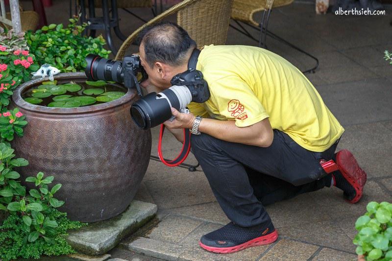 攝影外拍.台北相機街暑假拍樂趣