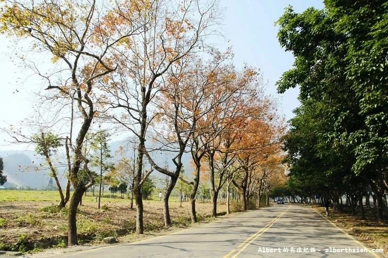 【楓葉】桃園大溪.石門水庫