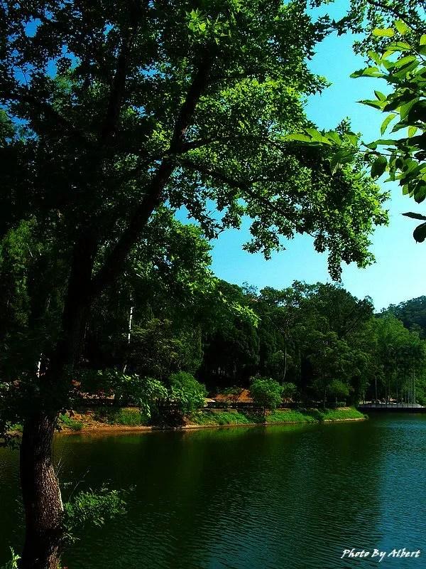 後慈湖.桃園大溪景點(神秘的祕境之南)