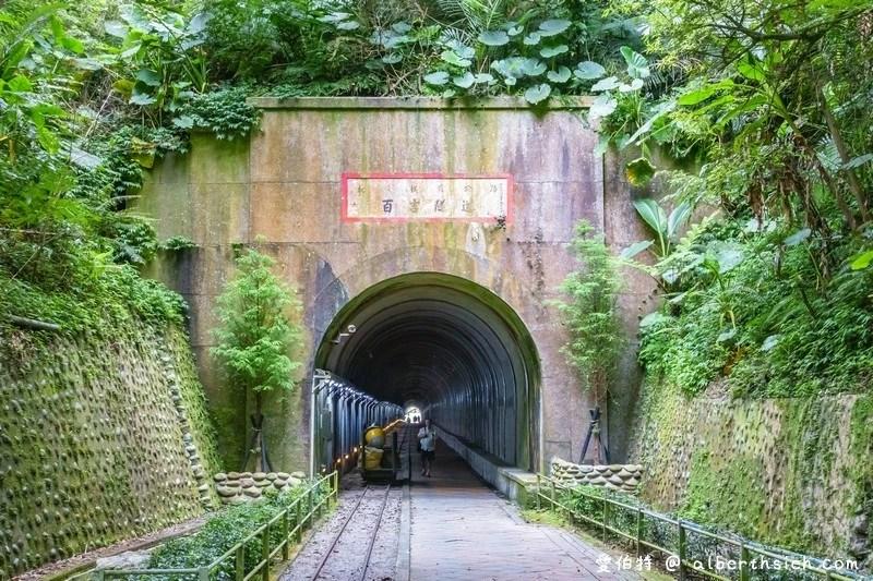 桃園螢火蟲.舊百吉隧道,百吉林蔭步道(路邊就可以輕鬆賞螢)