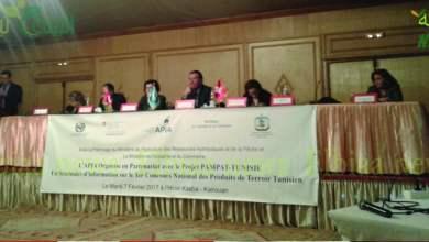 صورة في المناظرة الوطنية الأولى لتثمين المنتجات المحلية التونسية: 220 منتوج مشارك