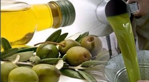 زيت الزيتون التونسي البيولوجي يُتوج في إيطاليا
