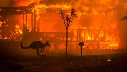 """حرائق استراليا تتسبب في ارتفاع """"تاريخي"""" لثاني أكسيد الكربون"""