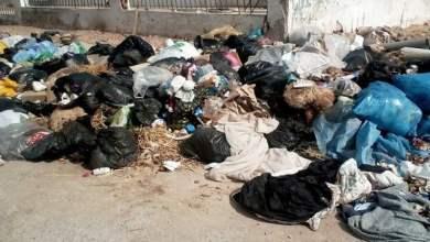 Photo of جلود الاضاحي أغرقت البيئة في الوساخة