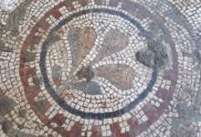 Photo of تونس.. اكتشاف أرضية فسيفسائية رومانية بولاية منوبة