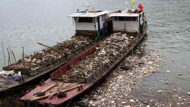 صورة بداية من 2021 : الصين تقرر حظر كافة وارادات القمامة