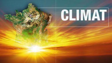 صورة تحييد أثر الكربون بحلول عام 2050: المهمة الأكثر إلحاحاً في العالم