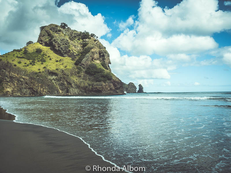 Nature's Treasures in West Auckland via Albom Adventures