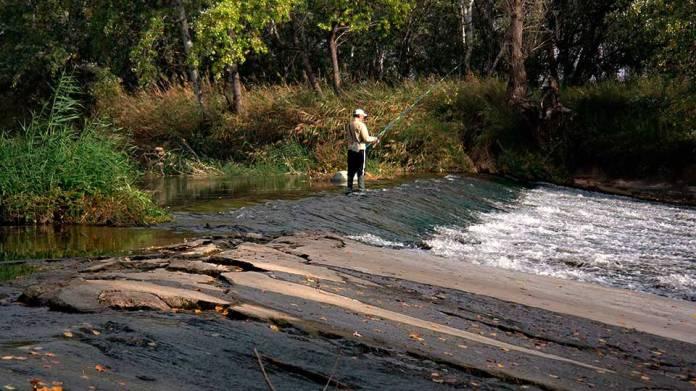 Esplendor otoñal en el rio Henares