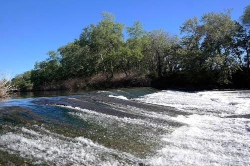 El caudal del Henares a comienzos de mayo