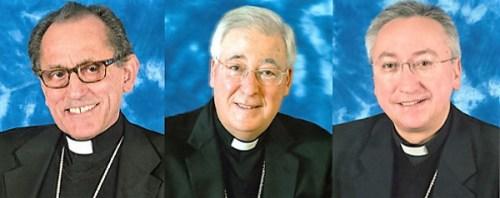 Los obispos de Alcalá , Getafe  «Nos quieren imponer un pensamiento único»