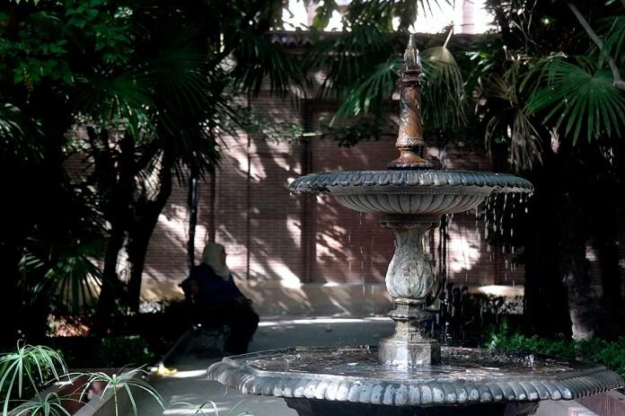 A la sombra en la Quinta de Cervantes
