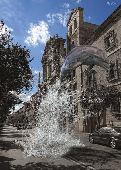 delfin-libreros