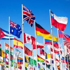 Insegne e bandiere